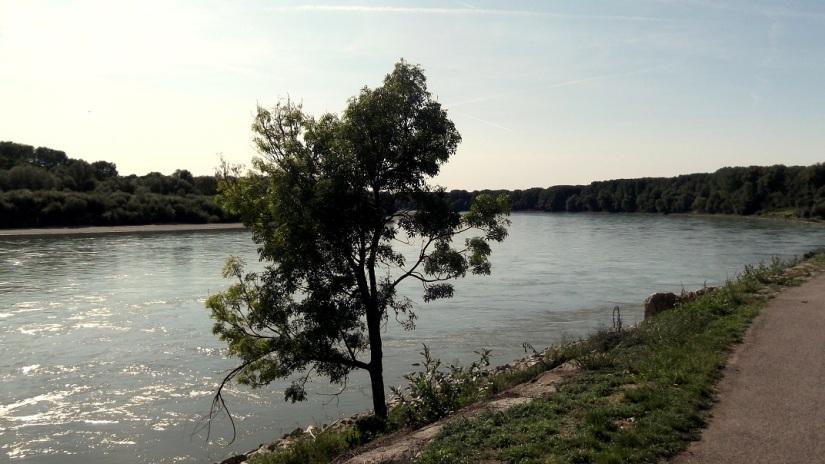 Danube River Devin