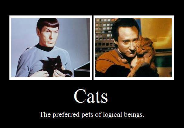 spock-data-cats