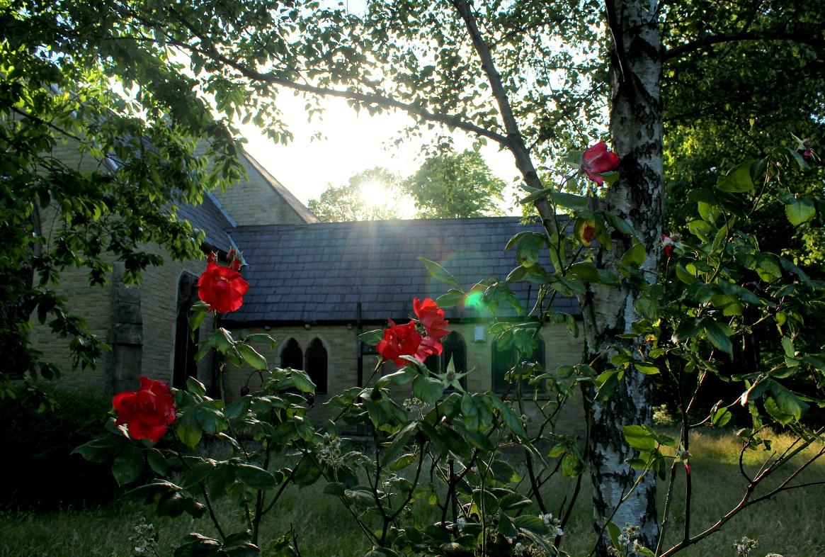 roses churchyard