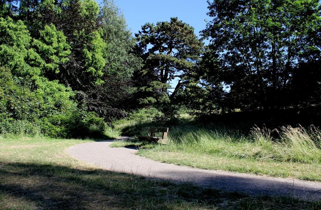 abney park5