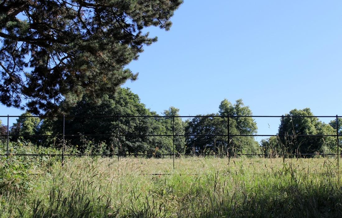 abney park7