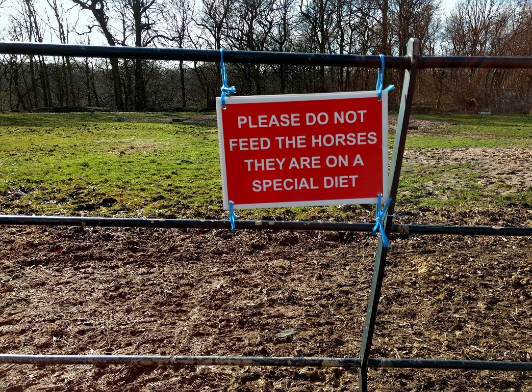 don't feed the horses2