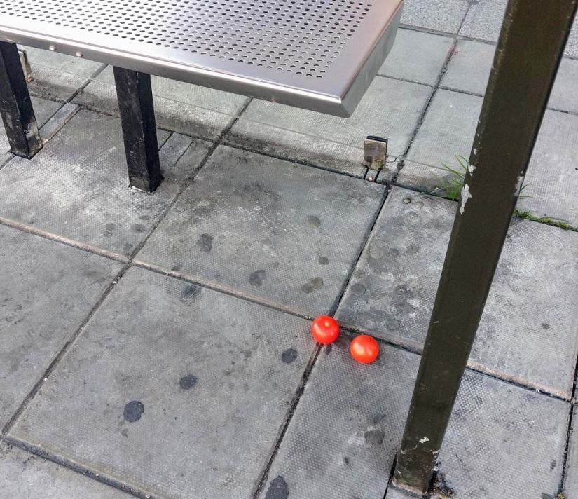 tomatos bus stop