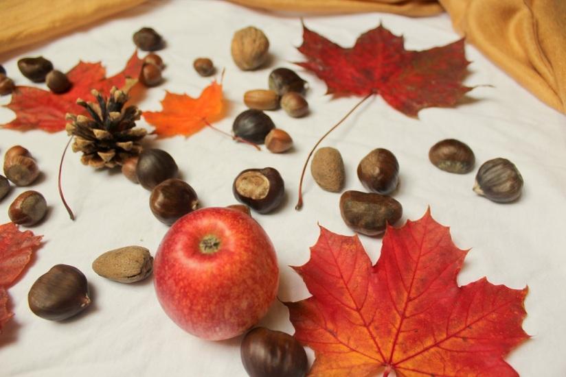autumnal stilllife2