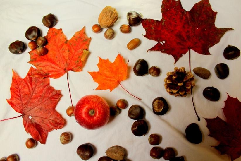 autumnal stilllife3