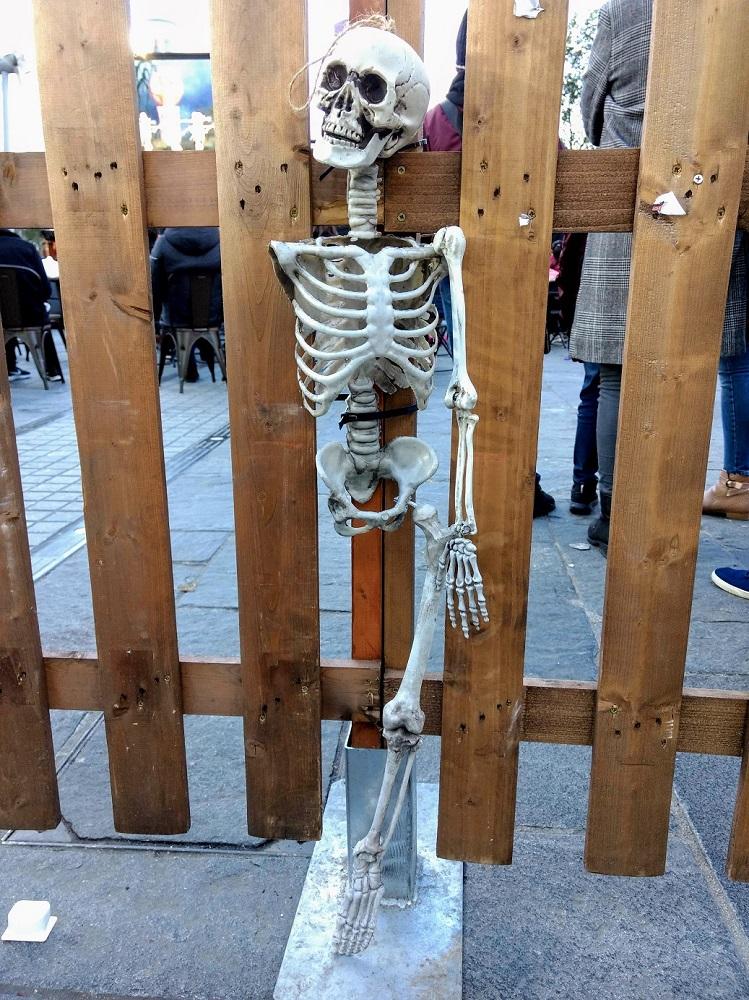 halloween skeleton1