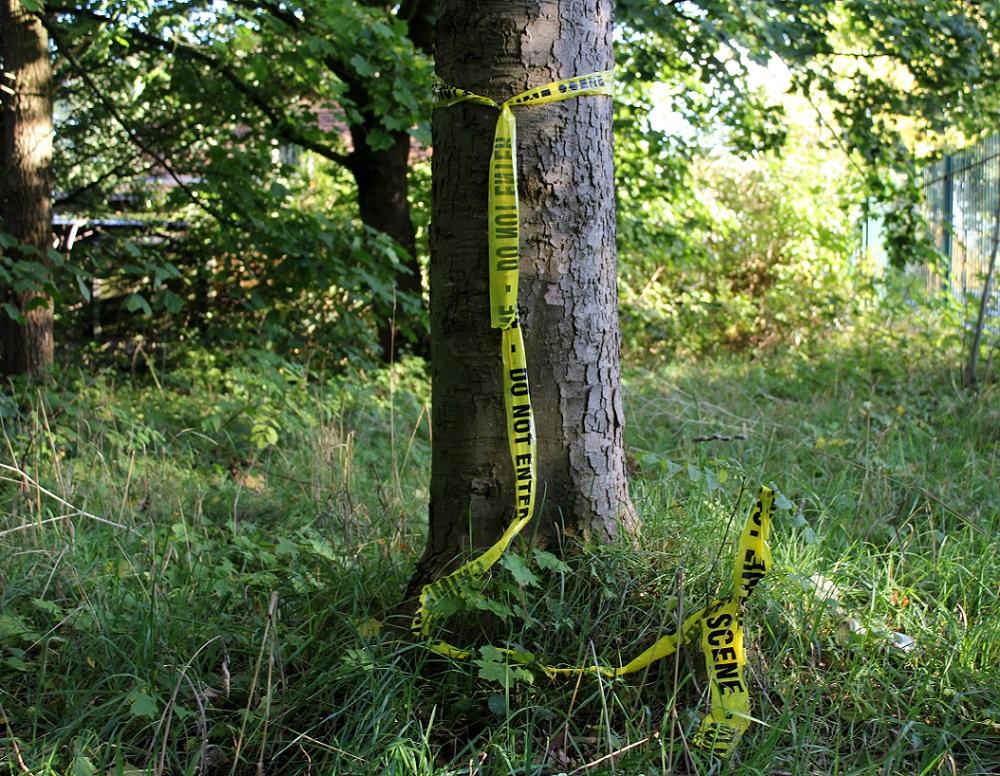 tree police tape